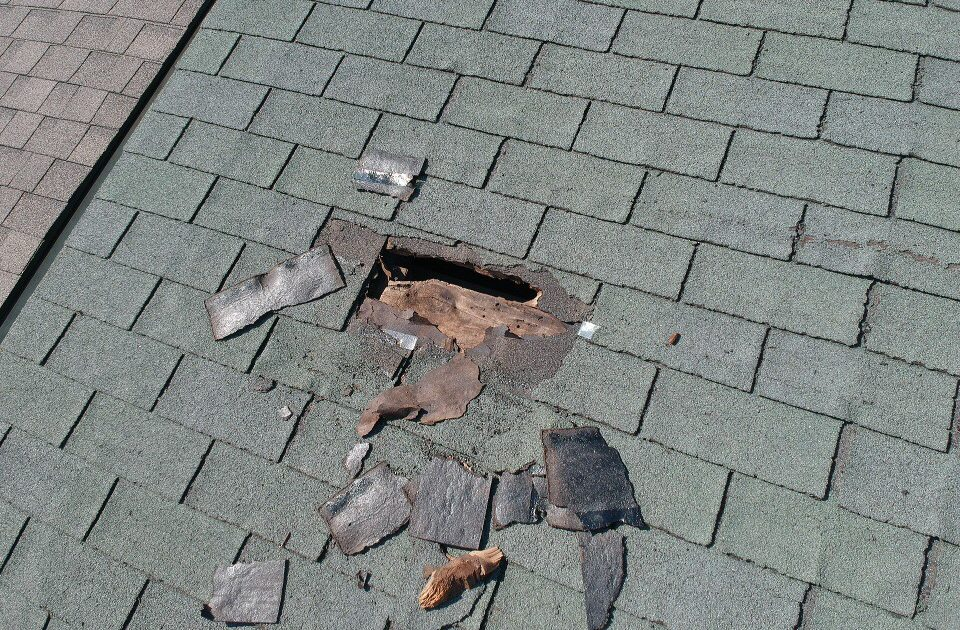 Picture of roof damage caused by raccoons