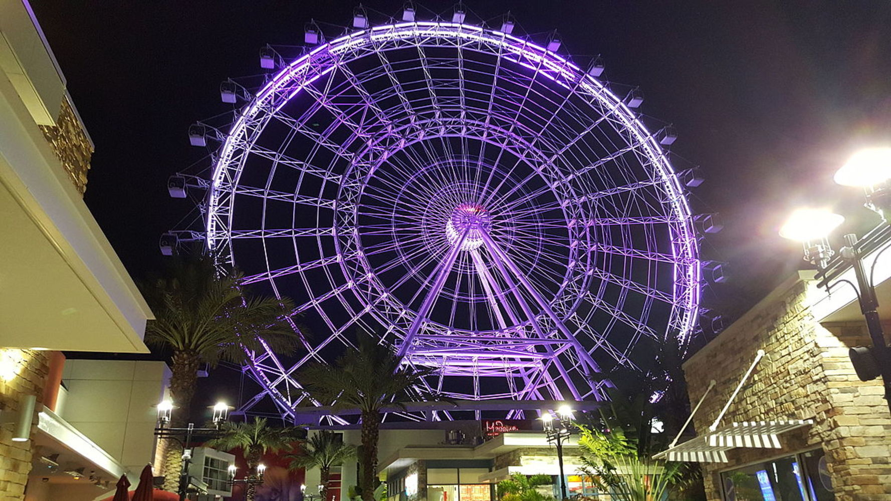 Picture of International Drive Ferris wheel in Orlando Florida